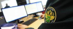 statisticheskoe-deklarirovanie-printsipyi-rabotyi-lichnyiy-kabinet-09